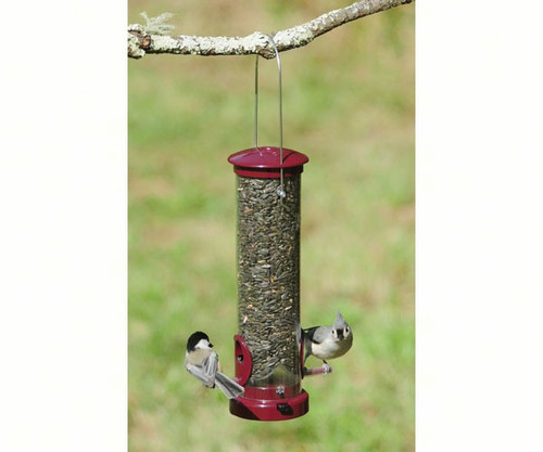 Aspects 442 Seed Tube Bird Feeder Small Berry ASPECTS442