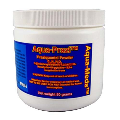Aqua Meds Aqua Prazi Koi Fish Fluke Treatment 50 grams PZ50 78038