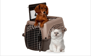 Crates and Kennels