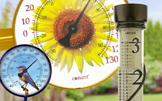 Clocks and Thermometers
