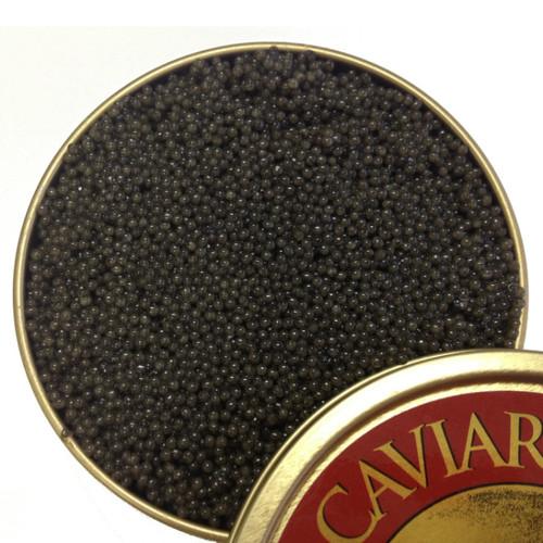 American Paddlefish Caviar