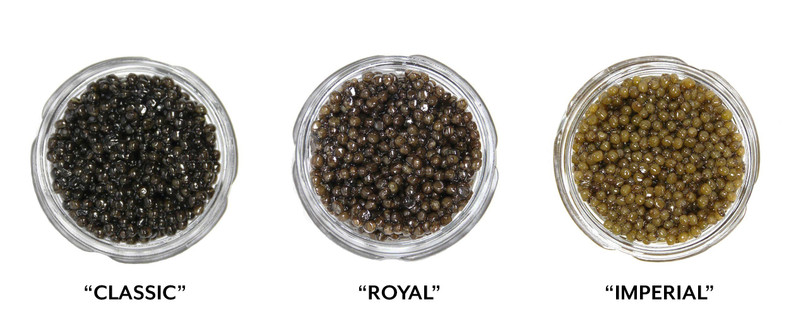 What's the difference between Select, Classic, Royal, Supreme and Imperial caviar?