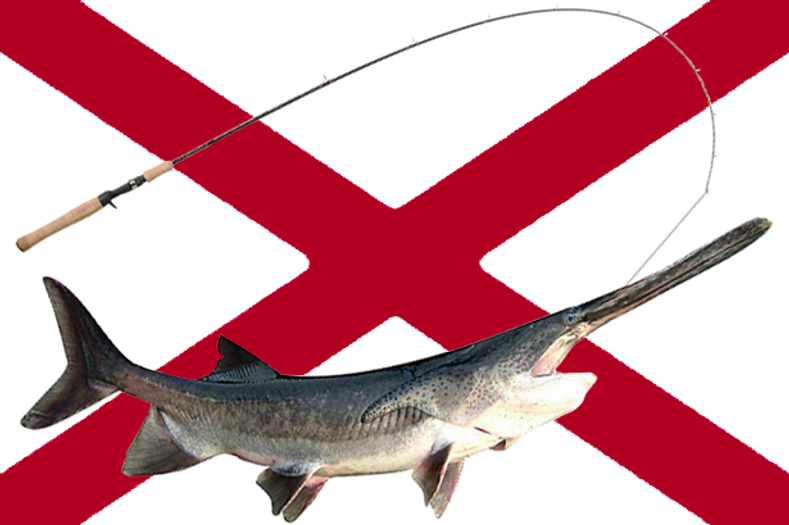 Alabama Suspends Commercial Paddlefish Fishing