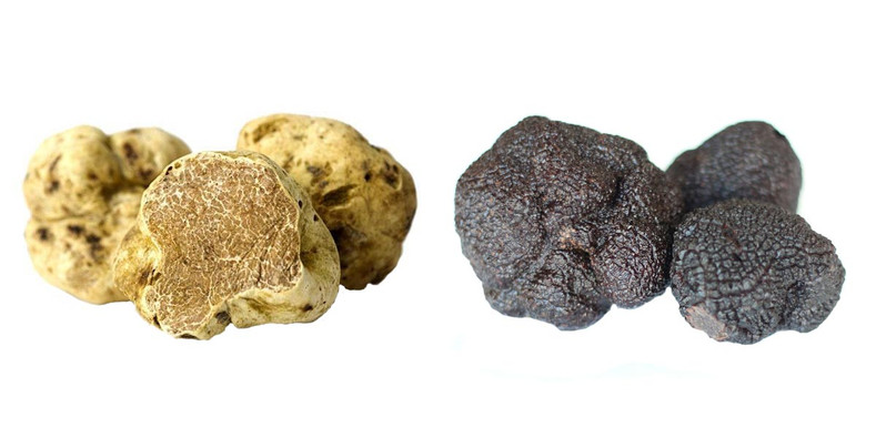 What do truffles taste like?