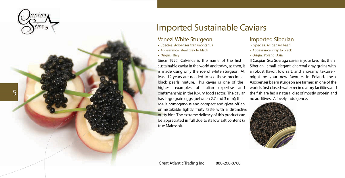 caviar-star-catalog-6.png