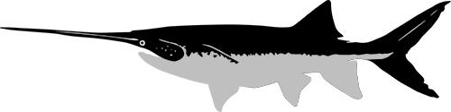 caviarstar-paddlefish-black3-small.jpg