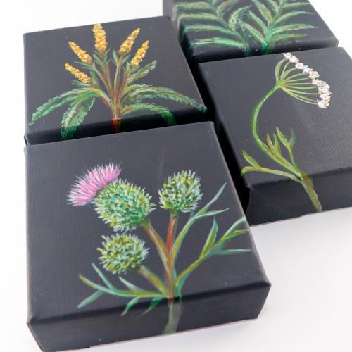 "Original Painting Set: Beautiful Weeds (6""x6"") Set of 4 Canvases"