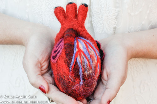 Needle Felted Anatomical Heart (Human-Scale)