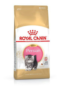 For Persian Kittens from 4 months to 1 year old