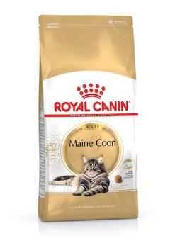 For the adult Maine Coon > 15 months old