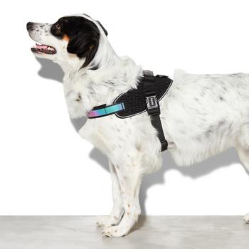 Zee.Dog Gotham Flyharness Size 4(Girth 62-85cm)