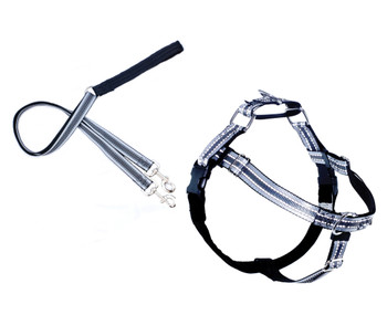 REFLECTIVE FREEDOM NO-PULL HARNESS AND LEASH - BLACK / LARGE