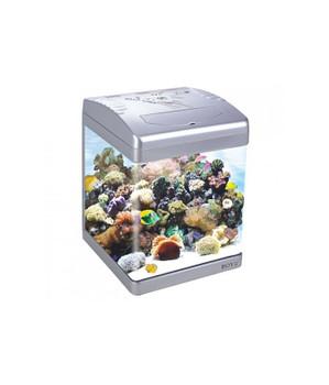 Boyu Aquarium 310Lx330Wx455Hmm-[ASD-320LD]-31L