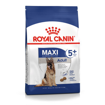 For adult Maxi dogs, > 5 years old