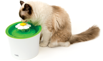 The Flower Fountain uses running water to encourage your pet to drink more. Drinking regularly is important for your cat's health, as it helps ensure proper kidney function and prevents crystal formation that can lead to urinary diseases.The Catit Flower Fountain includes a dual-action water softening filter (refill sets available separately). The filter continuously purifies and softens hard tap water, while also retaining stray hairs, sediment and debris.The Catit Flower Fountain is easy to disassemble and clean. Simply hand-wash each part with natural soap, free of chemicals or abrasive solutions and rinse thoroughly.