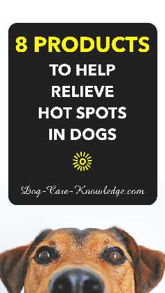 Hot Spots in dogs and the 8 products that can treat them.