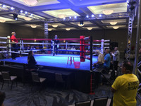 Canvas Boxing Ring Cover Made in USA - PRO FIGHT GEAR®