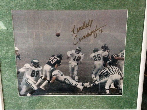 Randall Cunningham autographed Fog Bowl 16 x 20 Artist Proof 1/1
