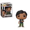 POP! Television ~ Big Bang Theory ~ Raj Koothrappali #781
