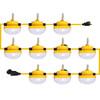 100' Construction String Light