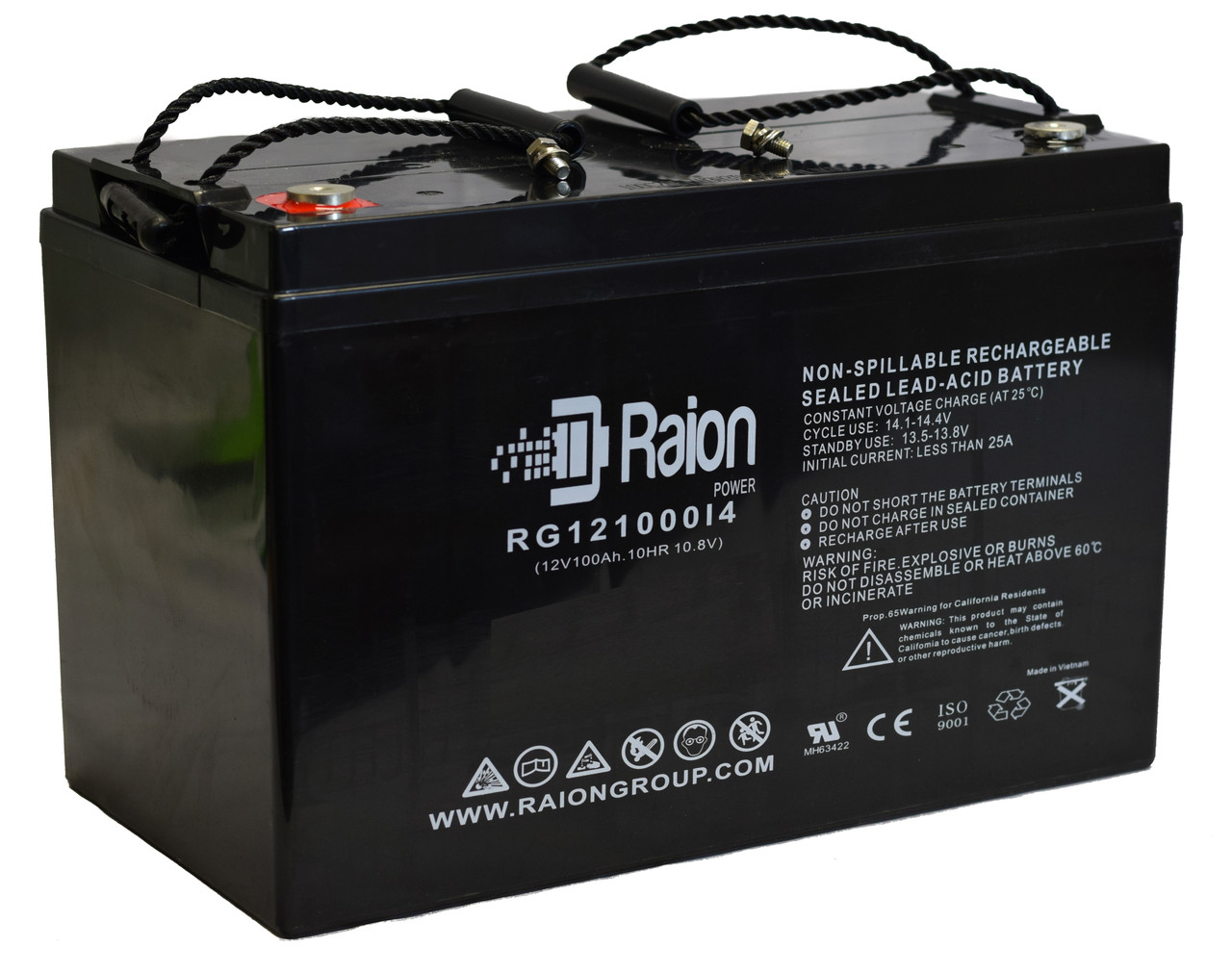 Raion Power RG121000I4 12V 100Ah Battery With Internal Thread Terminals