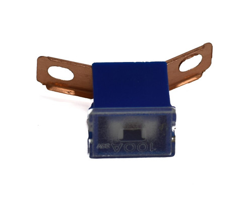 Raion Power Replacement RBC7 100A Fuse For APC BackUPS Pro BP1400X116