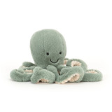 Small Odyssey Octopus