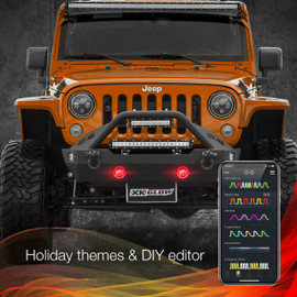 Holiday Theme & DIY Presets via smartphone app to display selected options colors