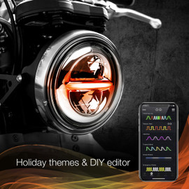 Holiday Theme & DIY Presets used via smartphone app to display selected options colors.