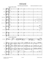 Sheet music for Rachmaninoff, S. - Vocalise Op.34 No.14 for Violin and Orchestra