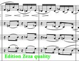 sheet music Gliere Concerto for Coloratura Soprano and Orchestra Op.82 Edition Zeza