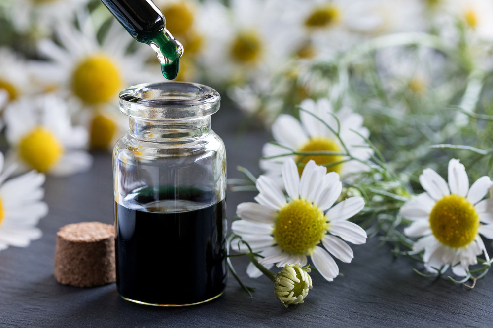 ​Top Four Benefits of Roman Chamomile Essential Oil