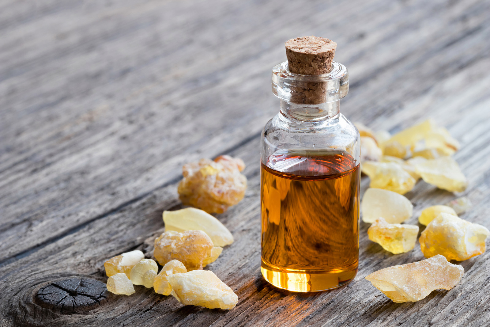 Benefits Of Frankincense Essential Oil For Beauty And Health Sheer Miracle