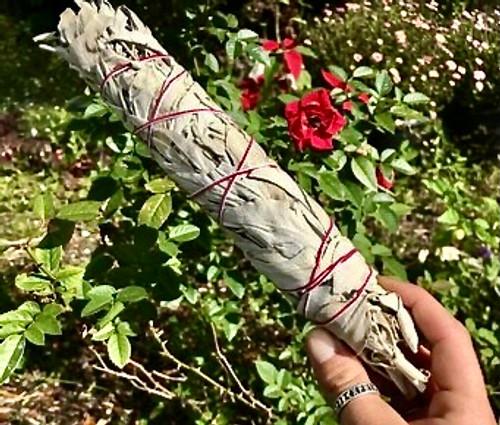 White Sage Bundle