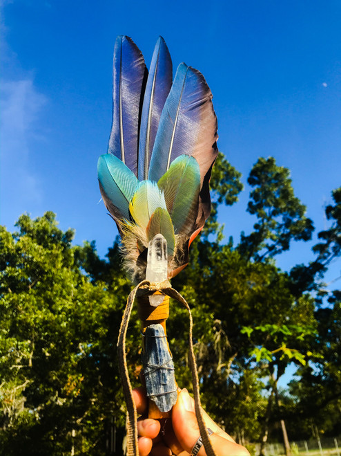 Alignment Macaw Feather Smudge Fan