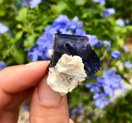 Yaogangxian Rutilated Fluorite with Bladed Calcite