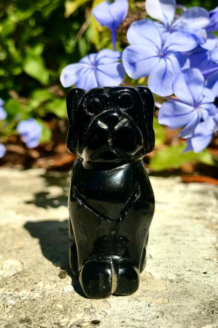 Obsidian Dog