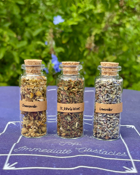 Calming Herb Set - Lavender, Chamomile, St. John's Wort