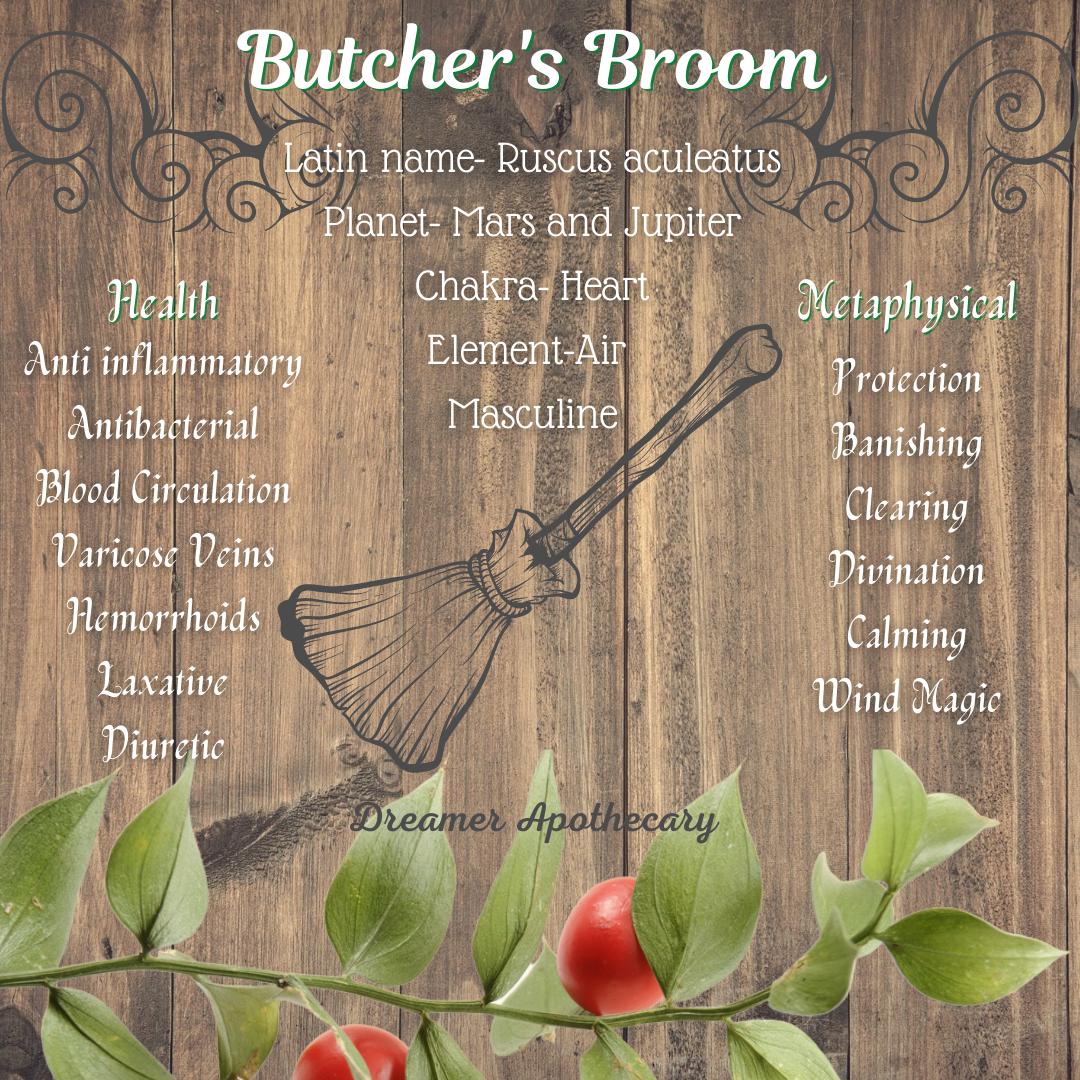 butcher-s-broom.png