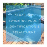 Algae in swimming pools
