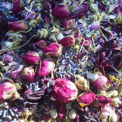 Imbolc Herbs