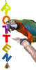 55048 Rotten. Colorful cut out acrylic letters, spells out, just what your large feathered friend is.