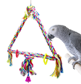 What is the best selling Parrot Swing?