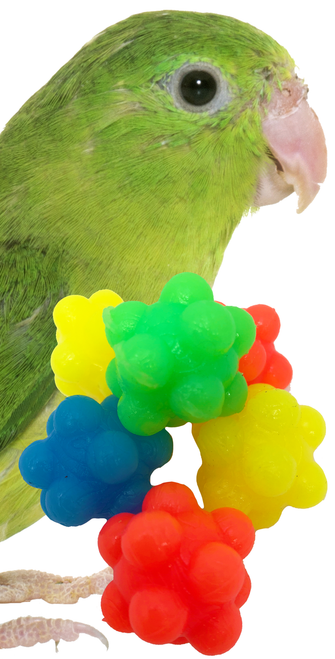 Six colorful nobbly balls makes for the perfect foot - talon toy for your bird. A great item to throw around, kick, chase, or just plain old horse around. These colorful nobbly balls measure approximately .5-inch in diameter.