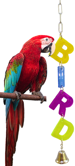 55021 Big Bird. Colorful cut out acrylic letters, spells out, just what your large feathered friend is.