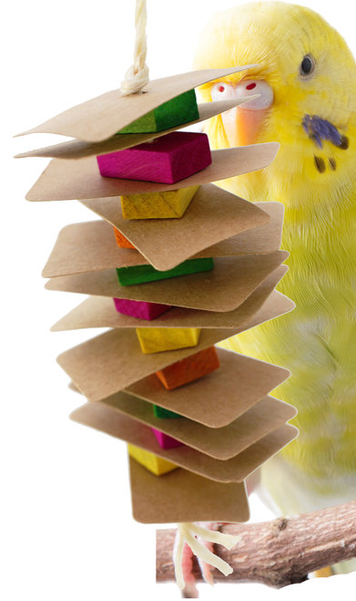1274 Small card tower is the perfect toy for that small feathered friend in your family that like to chew.