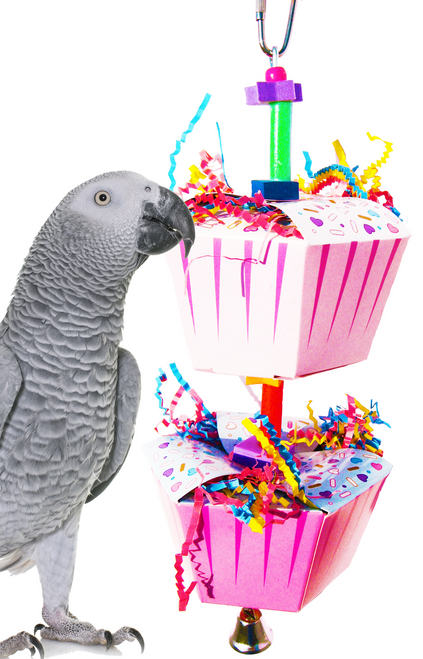 1082 Duo happy birthday is just a great way to celebrate with your small to medium sized feathered friends.