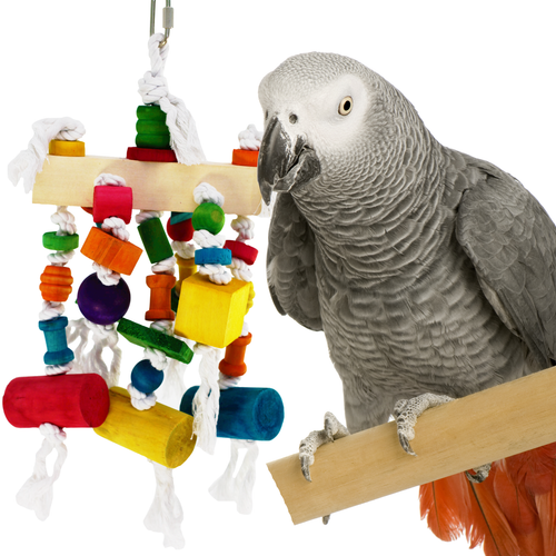 900 Woodeo is a plethora of beak happiness for those serious medium to large-sized feathered chewers in your family.