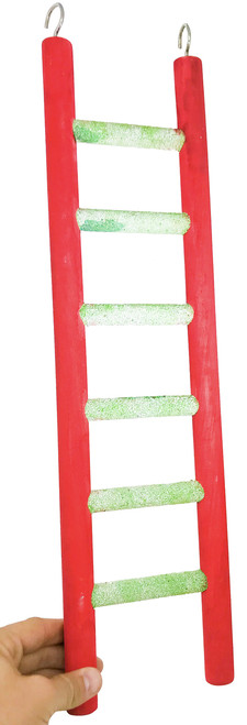 Looking for a robust heavy duty ladder for your large pet bird? Then check out the 20 Inch Heavy Weight Pedi Ladder! The ladder is made with sturdy construction.