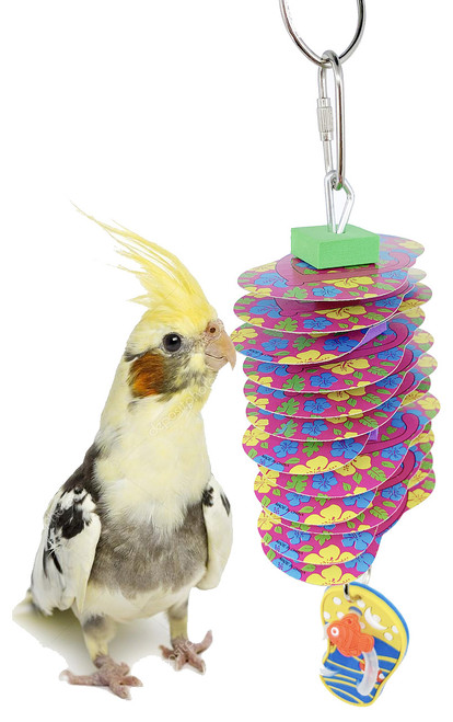 The 2123 Beach Card is a bright way to bring the fun of the beach to your pet birds cage!